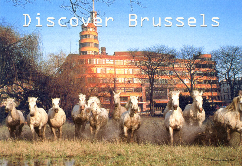 Discover Brussels